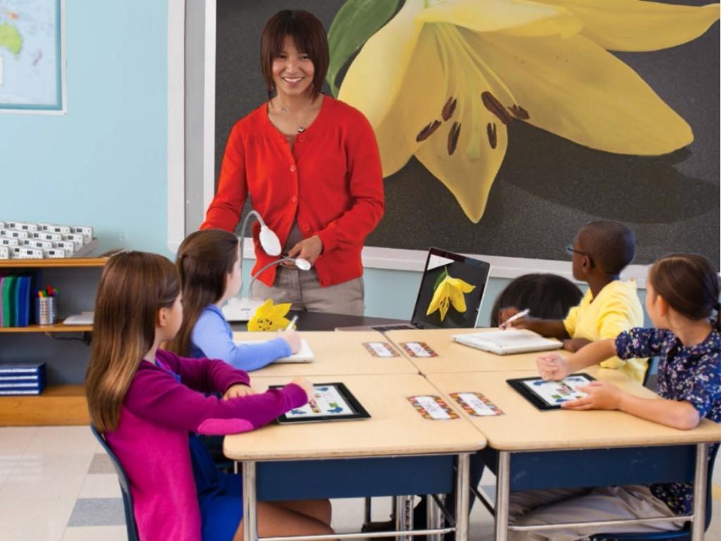¿Cómo promover la igualdad en la educación?