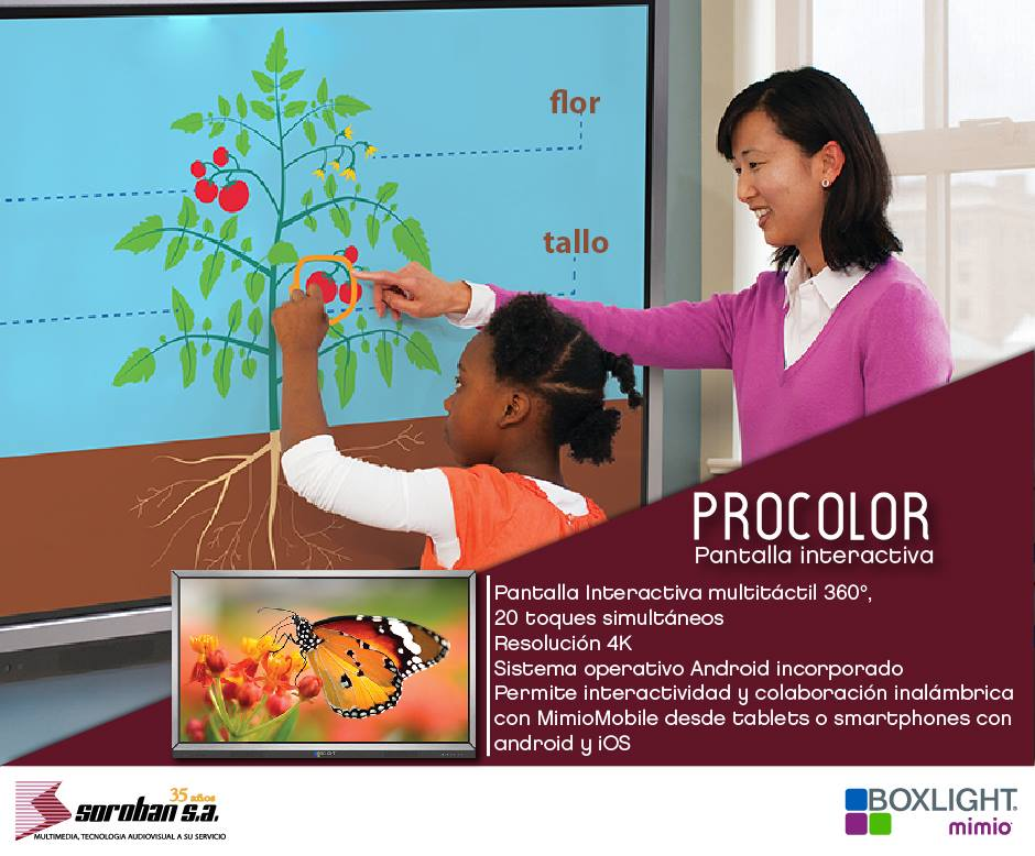 Pantalla Interactiva para el sector educativo de 65""
